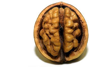 ¿Nueva opción terapéutica para los síndromes de Dravet y Lennox-Gastaut?